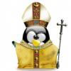 penguin10916